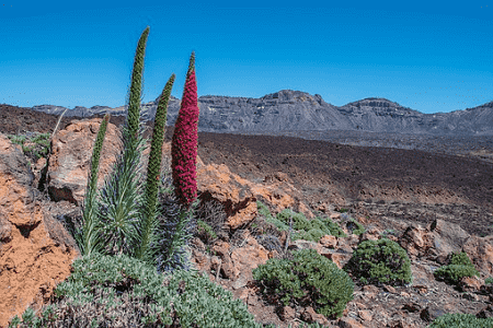 A view on Gran Canaria